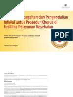 ppi ispa.pdf