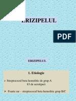 ERIZIPEL