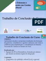 3 Apresentação TCC - UFPA