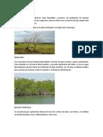 Ecosistemas Colombiano