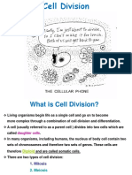 Lec 8 Cell division.ppt