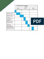 Cronograma Net