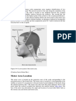 Precise Location of Chinese Scalp Acupuncture Areas Requires Identification of Two Imaginary Lines on the Head