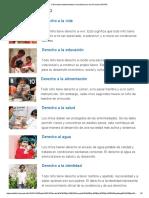 8 Derechos Fundamentales _ Humanium Por Los Derechos Del Niño