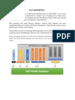 SAP Data Reporting Documentation