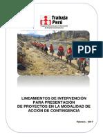 LINEAMIENTOS ACCION DE CONTINGENCIA 2017.pdf