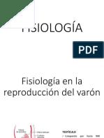 reproductor-mas (1).pptx