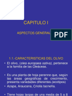 TOYE-CAPITULO I.A (1).ppt