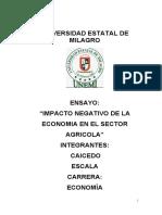Ensayo de Economia. IMPACTO NEGATIVO DE LA ECONOMIA EN EL SECTOR AGRICOLA
