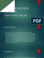 Diapositivas Plan de Acción Riesgos Psicosociales