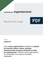 Cultura Organizacional - Mauricio Atri Cojab