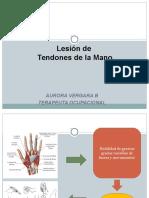Clase Lesion Tendones Para Alumnos[1] (1)