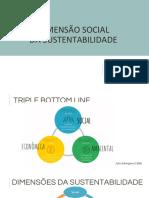 Apresentação Dimensão Social