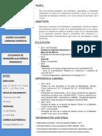 Curriculum Vitae - Andres