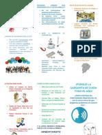 Triptico Voz.pdf