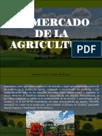 Armando Nerio Guedez Rodríguez - El Mercado de La Agricultura
