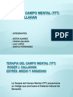 Terapia Del Campo Mental (Tft)