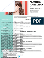 49-curriculum-vitae-vivaz-97-2003.doc
