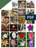 Flores y Instituciones