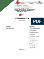 Gestion Publica, Diagnostico
