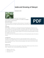 Production Guide and Growing of Saluyot