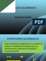Expresion Algebraica 11