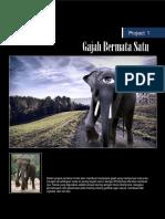 Digital Imaging Series Super Manipulation.pdf
