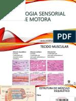 Aula 9_Fisiologia Sensorial e Motora