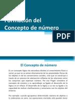 Formación Del Concepto Numero - Maria Henriquez