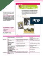 LPM-GEOGRAFIA-1-V1-10DE18[1].pdf