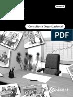 Consultoria Organizacional - Vol.1