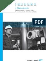 E+H Guia de mantenimiento general.pdf