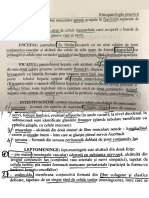 Histopatologie Practica