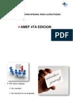 AMEF_edicion jlv_