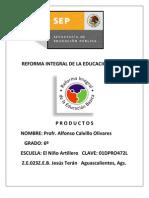 Productos RIEB Modulo I Profr. Alfonso Calvillo Olivares