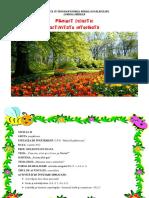0 Cerc Pedagogicioana Moldoveanu (1)