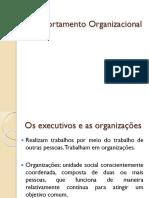 01 Comportamento Organizacional (1)