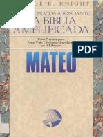 Knight Mateo Biblia Amplificada 2