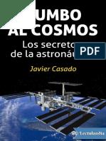 Rumbo Al Cosmos - Javier Casado
