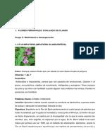 TRABAJO DE FLORES DE BACH   INDIVIDUAL 2 SANDRA.docx