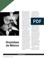 12052-11791-0-PB.pdf