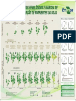 Estádios Fenológicos e Marcha de Absorção de Nutrientes Da Soja (1)