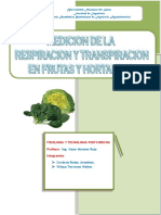191020245-Respiracion-y-Transpiracion-INFORME-4.docx