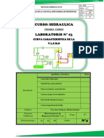 03 - Curva Caracteristica de la VLPMD TERMINADO.docx