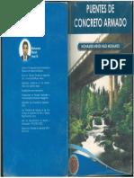 PUENTES DE C.A. MOHAMED.pdf