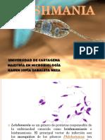 3. Leishmania