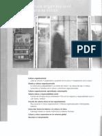 Daft (2011) Cap 10 Diseño en Entornos