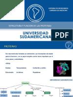 PROTEINAS sudamericana