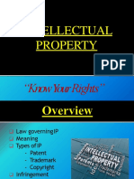 Intellectual Property Rights3