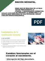 Reanimación Neonatal Curso